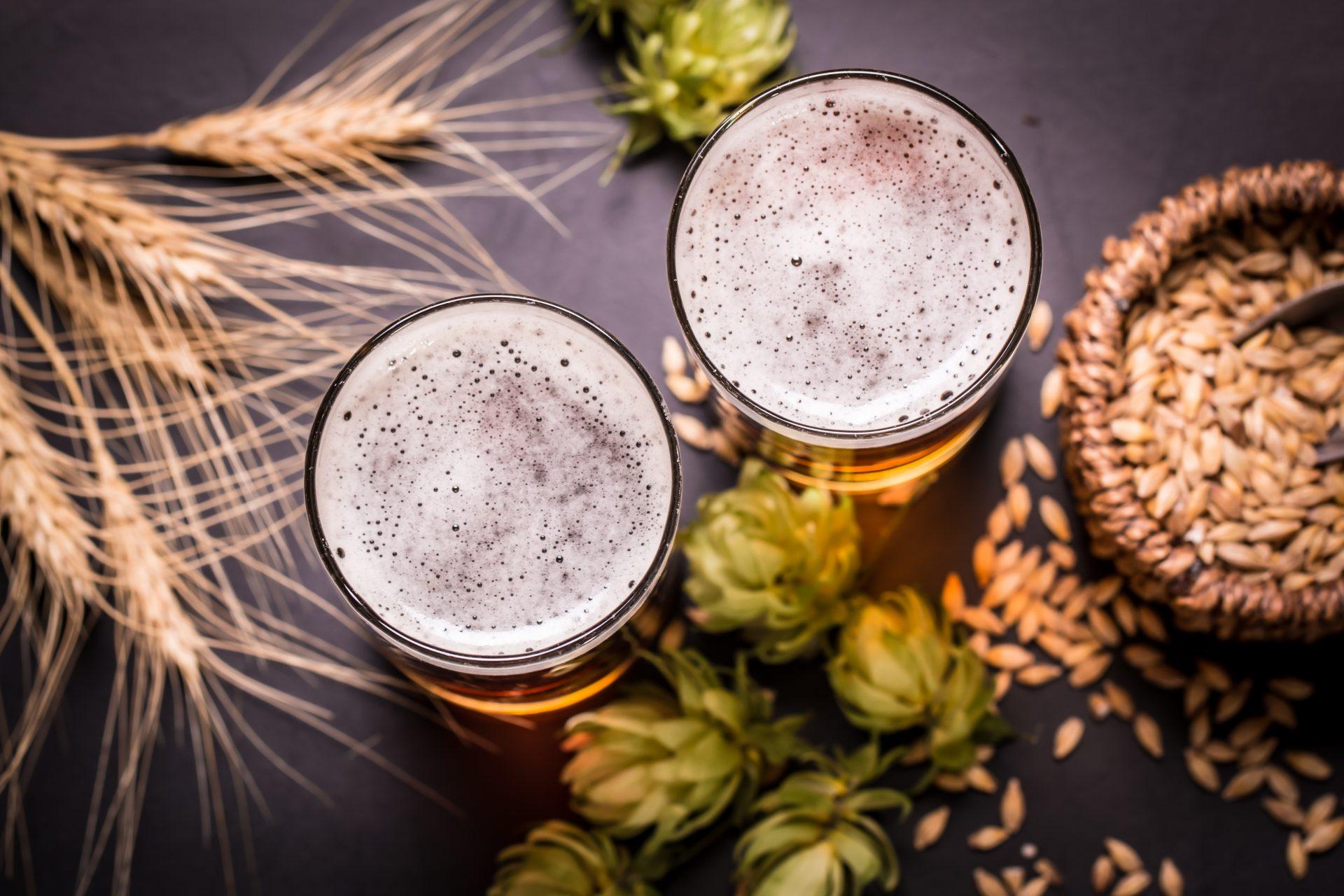 La storia della birra video image